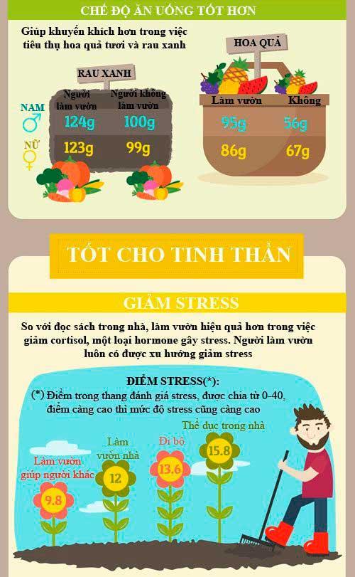 infographic 8 loi ich cho suc khoe tu lam vuon