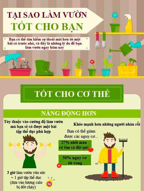 infographic lam vuon tot cho suc khoe 1