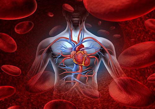 phong benh suy tim 2