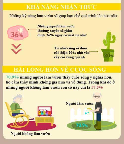 infographic 8 loi ich tu lam vuon cho suc khoe