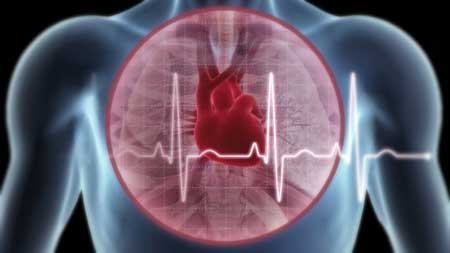 phong benh tim mach bang thao duoc