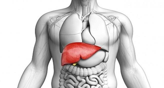 máu nhiễm mỡ kéo theo biến chứng gan nhiễm mỡ